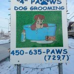 4 Paws Grooming